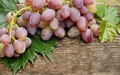 Grapes on wooden background — Stock Photo