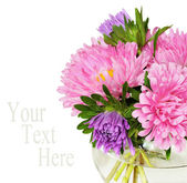 Bouquet of pink asters — Stock Photo