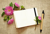 Notebook, pen and asters — Stock Photo