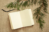 Notebook and juniper branches — Stock Photo