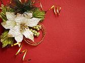 Fondo rojo con pionsettia — Foto de Stock