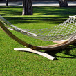Hammock on a green lawn — Stockfoto