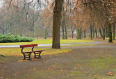 Empty park in a raining day — Stock Photo