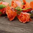 Roses on wood — Stockfoto #38982249