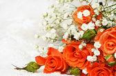 Orange roses on white — Stock Photo