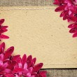 Paper card and aster flowers on canvas — Stock Photo