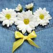 Stock Photo: Denim and daisies
