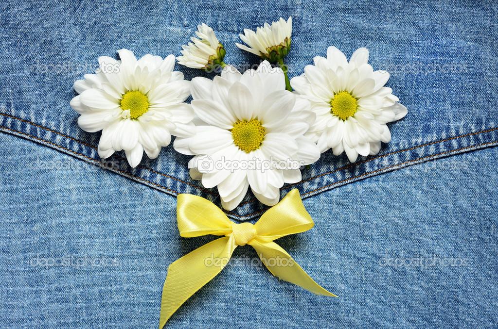 牛仔布背景的雏菊和黄色的缎带蝴蝶结–