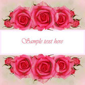 Pink rose flowers composition for greeting card — 图库照片