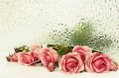 Pink rose flowers and  textured glass — Stock Photo