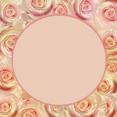 Rosa blommor — Stockfoto