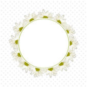 Background with daisy flowers  — Stock Photo