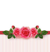 Rose flowers arrangement and frame — Stock Photo