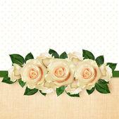 Rosa blumen-arrangement — Stockfoto
