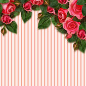 Red rose flowers arrangement and frame — Stock Photo