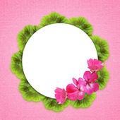 Roze achtergrond met geranium bloemen — Stockfoto