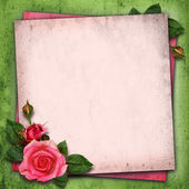 Rose flowers on vintage background — Stock Photo