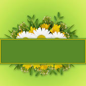 Wild flowers arrangement and frame — Foto Stock
