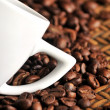 A cup of coffe with coffee arabic type beans — Stock Photo