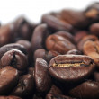 Stock Photo: Cup of coffe with coffee arabic type beans