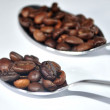 Coffe beans arabic and coffe capsule — Stock Photo