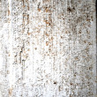 White wood old grunge background — Stock Photo