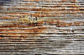 Texture di sfondo legno vecchio di antica porta fare in rovere — Foto Stock