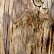 Wood surface ancient door or wood material — Foto de Stock