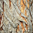 Wood surface ancient door or wood material — Stock Photo