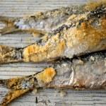 Fresh sardines roast with salt style mediterranean sea cook preparation — Stock Photo #29740125