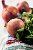 Ingredients for cooking delicious kitchen elaboration gastronomy meal — Stock Photo