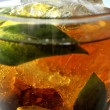 Ice tea fresh elaboration with lemon and mint leafs natural infusion — Stock Photo