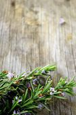 Fine herbs for cooking in a wood background rosemary fine herb — Stock Photo