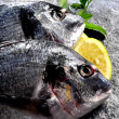 Gilthead fish cooking culinary arte food preparation raw fish — Stock Photo