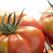 Tomatoes from organic agriculture cultive green — Stock Photo