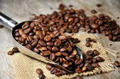 Coffee beans and backgrounds — Stock Photo