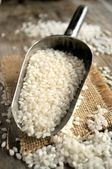 Rice production uncooked raw ingredient — Foto Stock