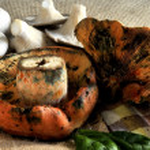 Mushroom brown close up view — Stock Photo #36360703