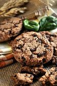 Chocolate cookie with cereal ingredient — Stock Photo