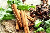Mint and spices in sack bacground — Stock Photo