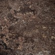Grunge texture - Stock Photo
