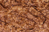 Brownish fibers texture — Stock Photo