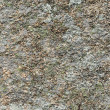 Stone surface — Stock Photo