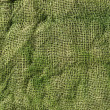 Green sackcloth background - Stock Photo