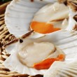 Stock Photo: Fresh scallops