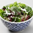 Mediterranean salad — Stock Photo #31627629