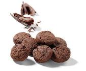 Chocolate cookies isolated — Stock Photo