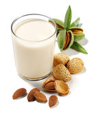 Almonds drink isolated — Stock Photo