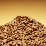 Roasted corn kernels — Stock Photo