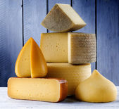 Cheeses — Stock Photo